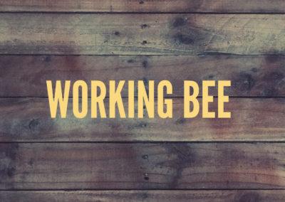 Working Bee | Byron Bay