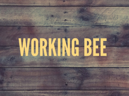 Working Bee | Byron Bay