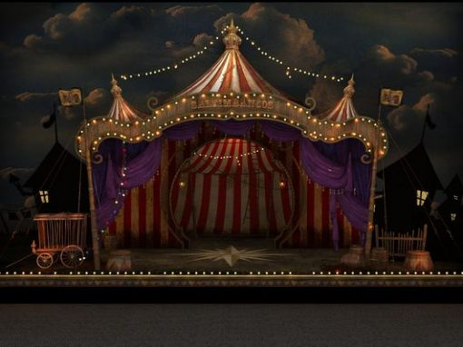 Circus Play Space Upgrade